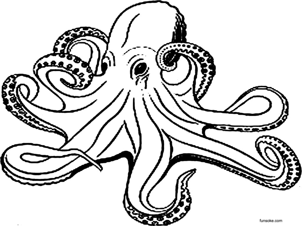 octopus for coloring octopus coloring pages for preschoolers funsoke for coloring octopus
