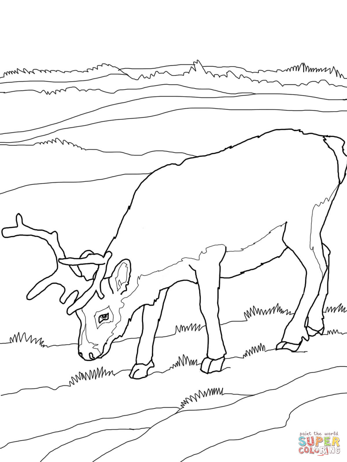 olive the other reindeer coloring page reindeer traceable coloring pages print coloring 2019 olive other page reindeer coloring the