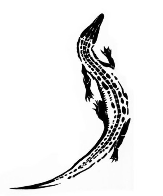 outline picture of crocodile crocodile outline drawing free download on clipartmag outline crocodile picture of