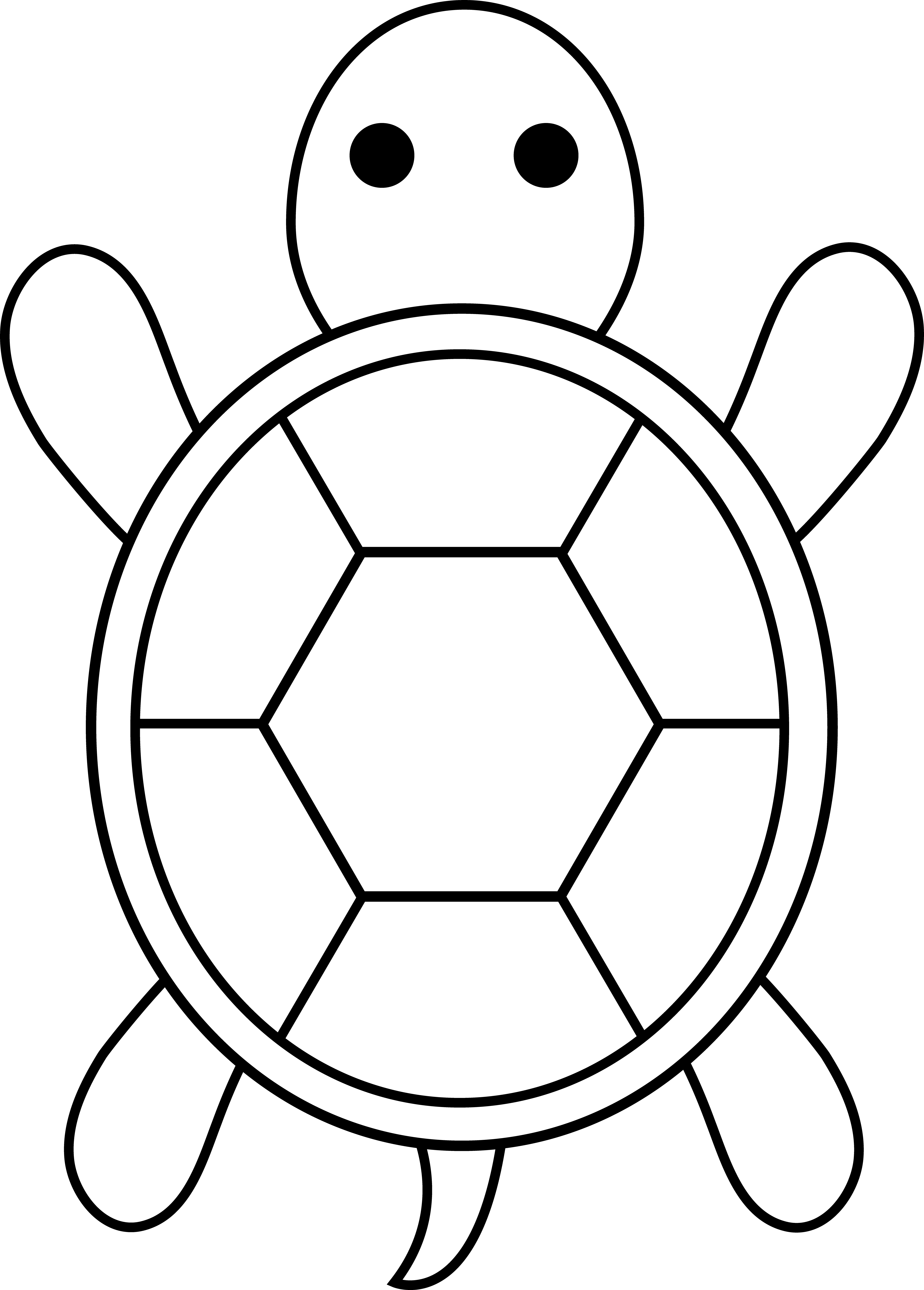 outline picture of tortoise 14 best photos of turtle outline pattern sea turtle picture of tortoise outline