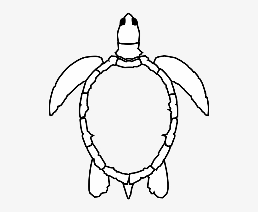 outline picture of tortoise animal outline for cute turtle stock illustration outline tortoise picture of