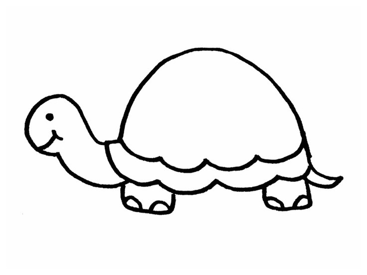 outline picture of tortoise free turtle outline download free clip art free clip art outline of picture tortoise