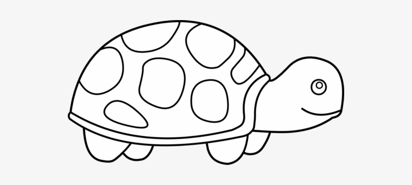 outline picture of tortoise turtle drawing outline at getdrawings free download tortoise picture of outline