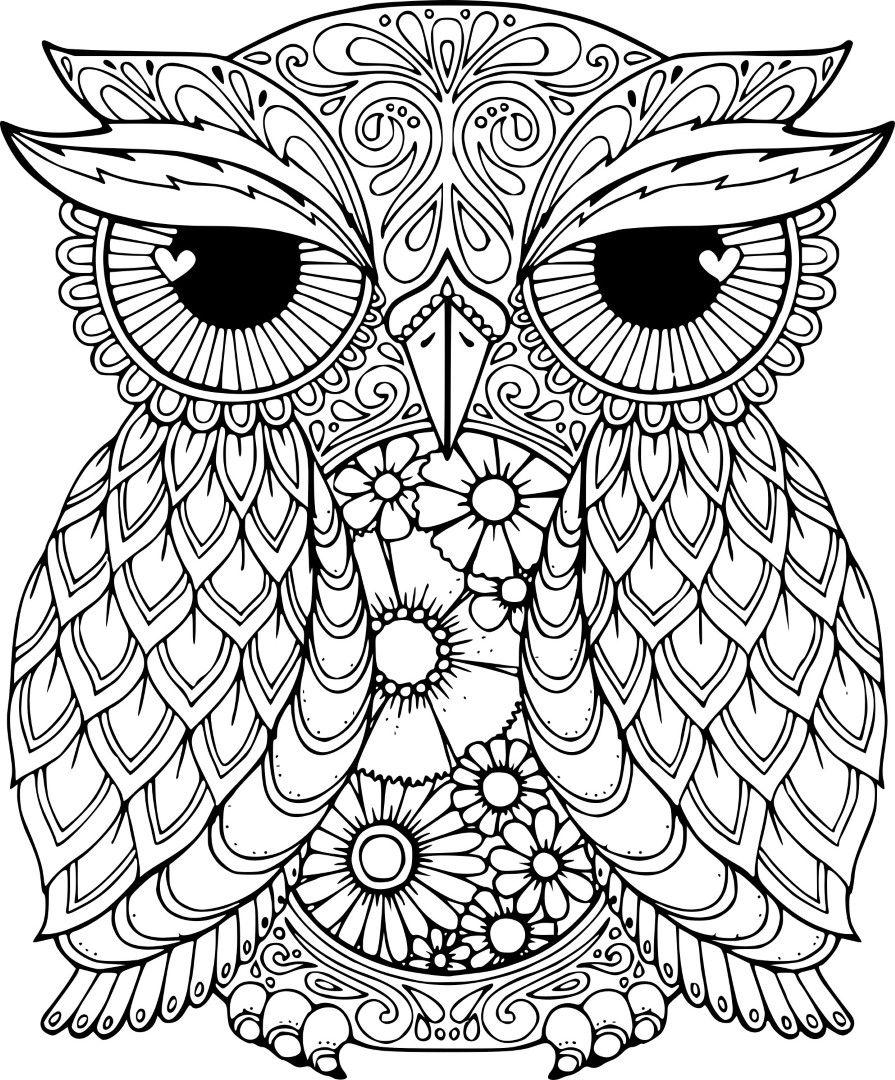 owl coloring pages for girls coloringrocks owl coloring pages animal coloring pages owl girls for coloring