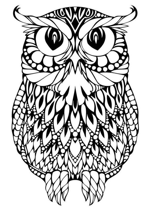 owl coloring pages for girls pin on cricut girls for pages coloring owl