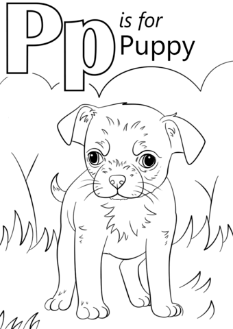p coloring sheets letter p is for puppy coloring page free printable sheets coloring p