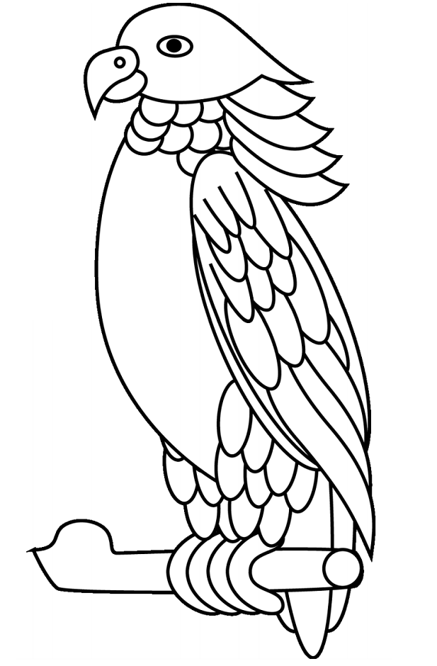 parrot to color free printable parrot coloring pages for kids to color parrot