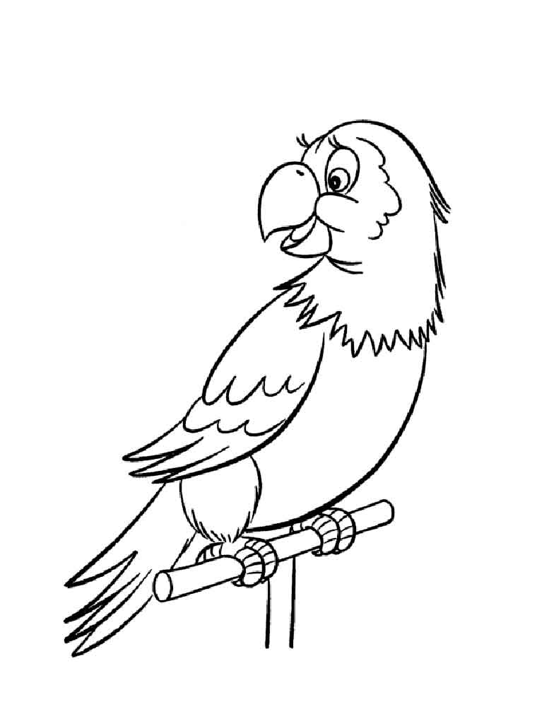 parrot to color parrot coloring pages download and print parrot coloring parrot to color