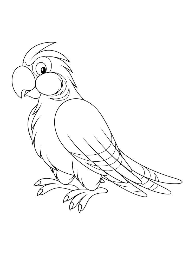 parrot to color parrot coloring pages download and print parrot coloring to parrot color