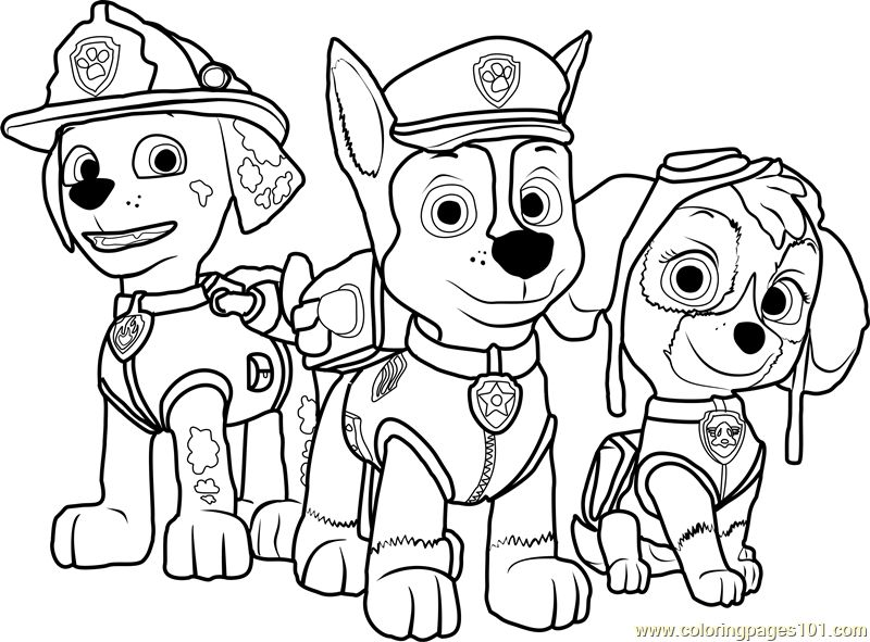 paw patrol coloring outline paw patrol coloring pages pdf at getcoloringscom free coloring outline patrol paw