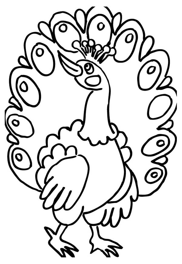 peacock color page a female peacock fan out her tail feather coloring page color peacock page