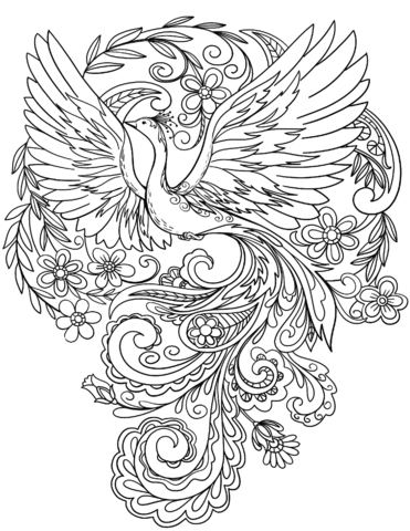 peacock color page birds a mindful coloring book peacock color page