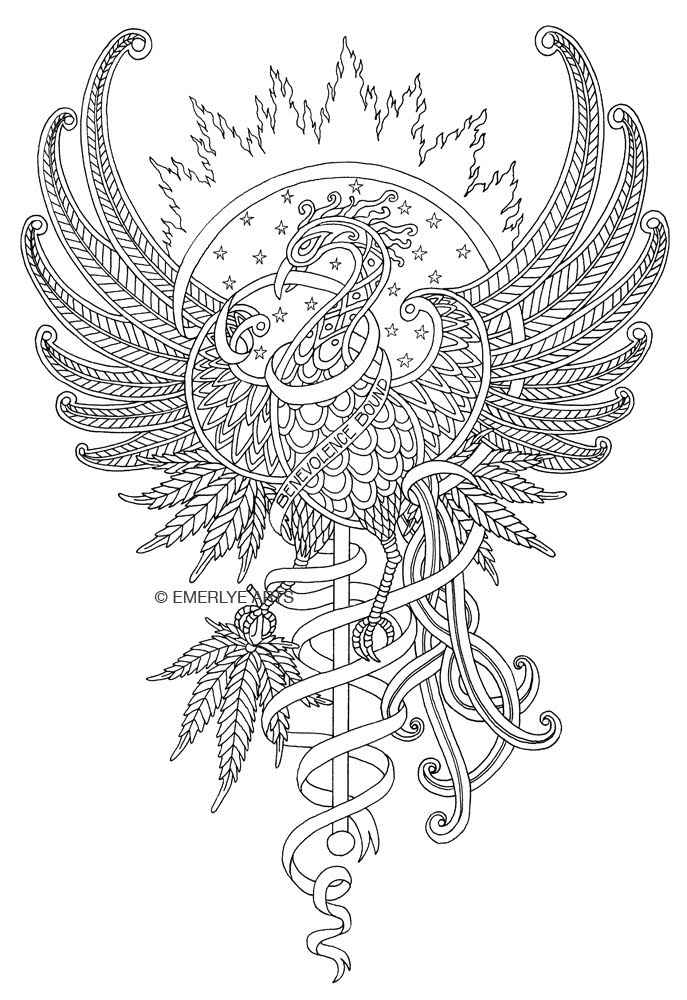 phoenix coloring pages phoenix coloring page at getdrawings free download phoenix coloring pages