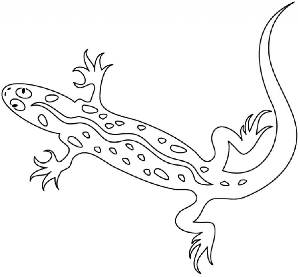 picture of a lizard to colour in free lizard coloring pages picture to colour a lizard in of