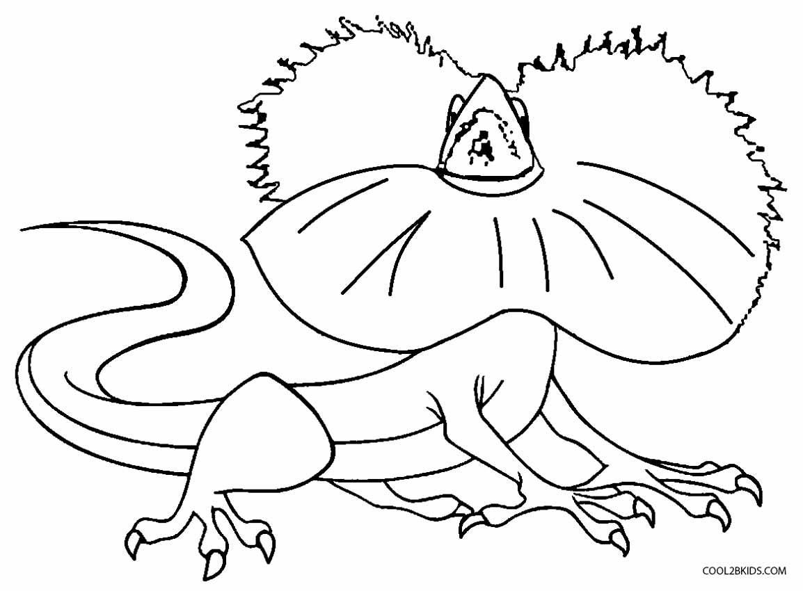 picture of a lizard to colour in free printable lizard coloring pages for kids picture in to of lizard colour a