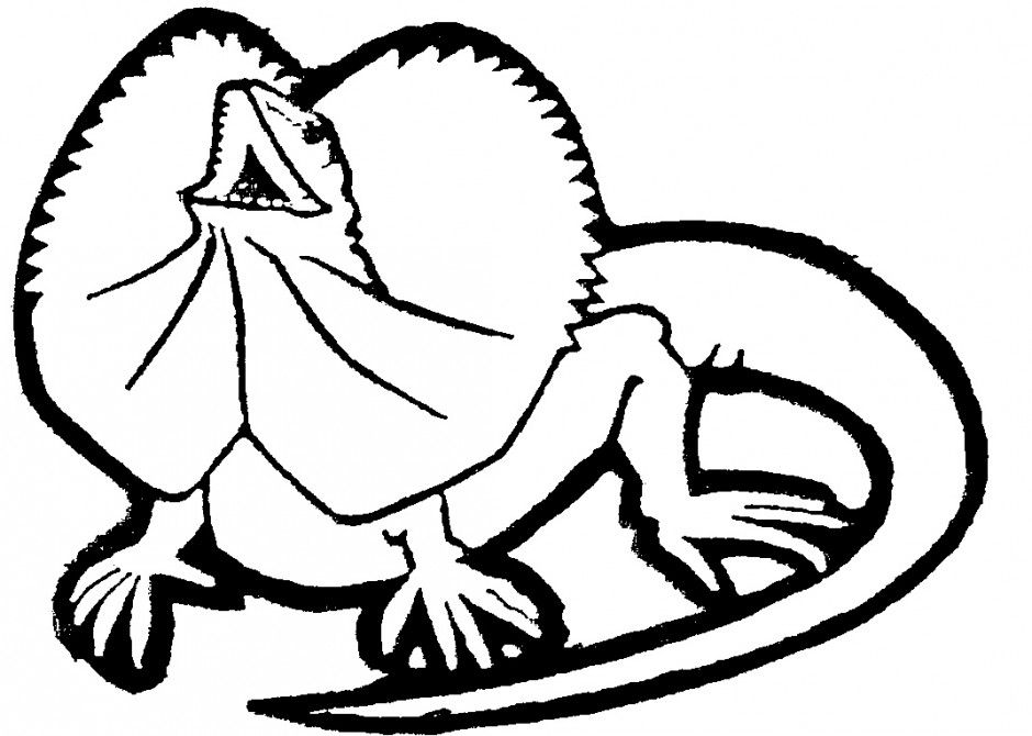 picture of a lizard to colour in printable lizard coloring pages for kids cool2bkids in a to colour lizard picture of