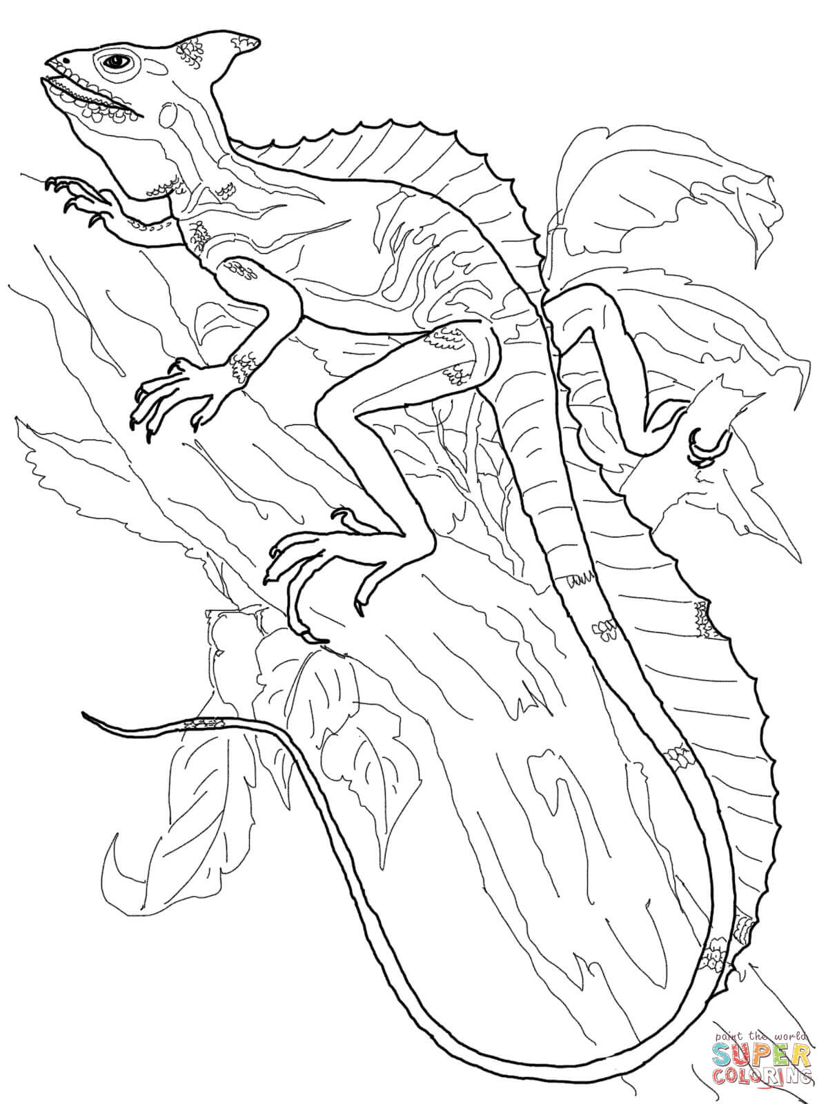 picture of a lizard to colour in projects design reptile coloring pages lizard free lizard to in colour of a picture