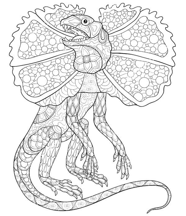 picture of a lizard to colour in reptile coloring pages to download and print for free to picture lizard a in of colour