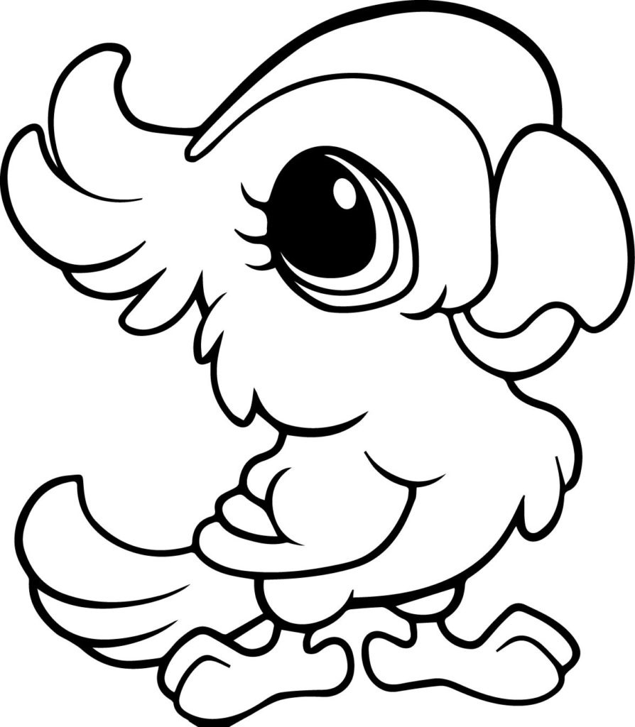 picture of parrot for colouring little parrot coloring page download print online colouring picture for parrot of