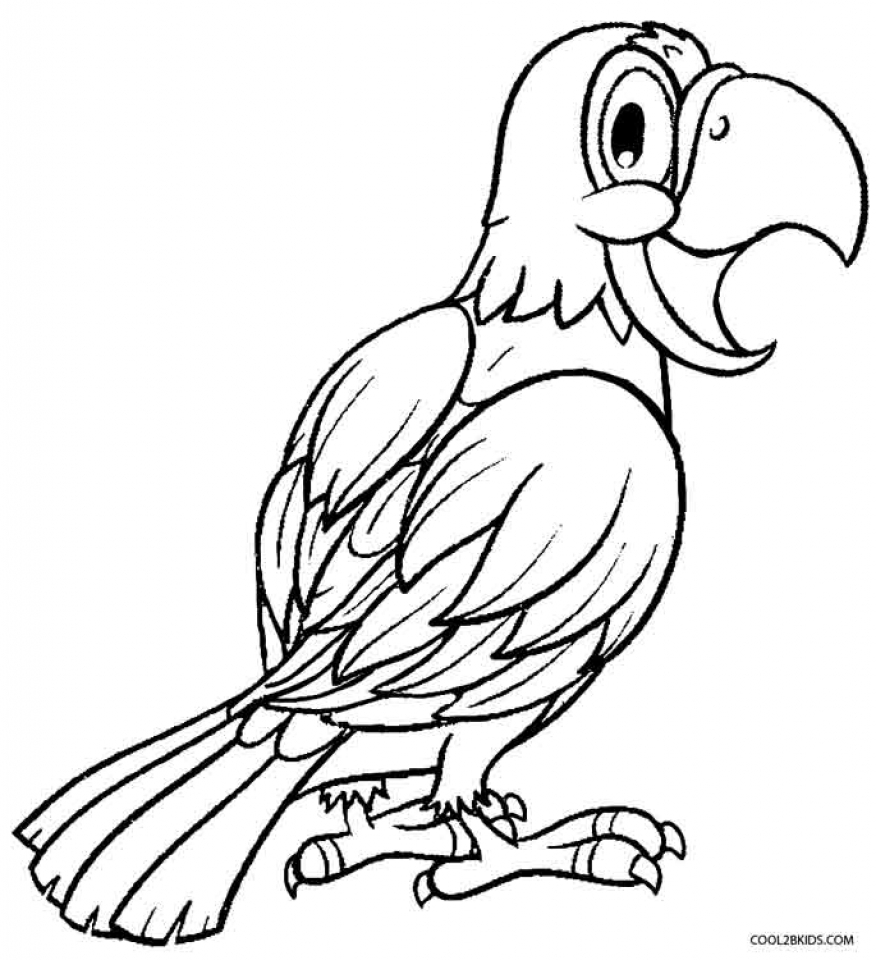 picture of parrot for colouring parrot black and white clipart free download on clipartmag of parrot for colouring picture