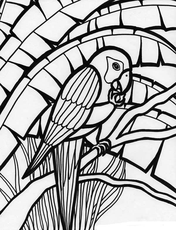 picture of parrot for colouring parrot coloring child coloring colouring of parrot picture for