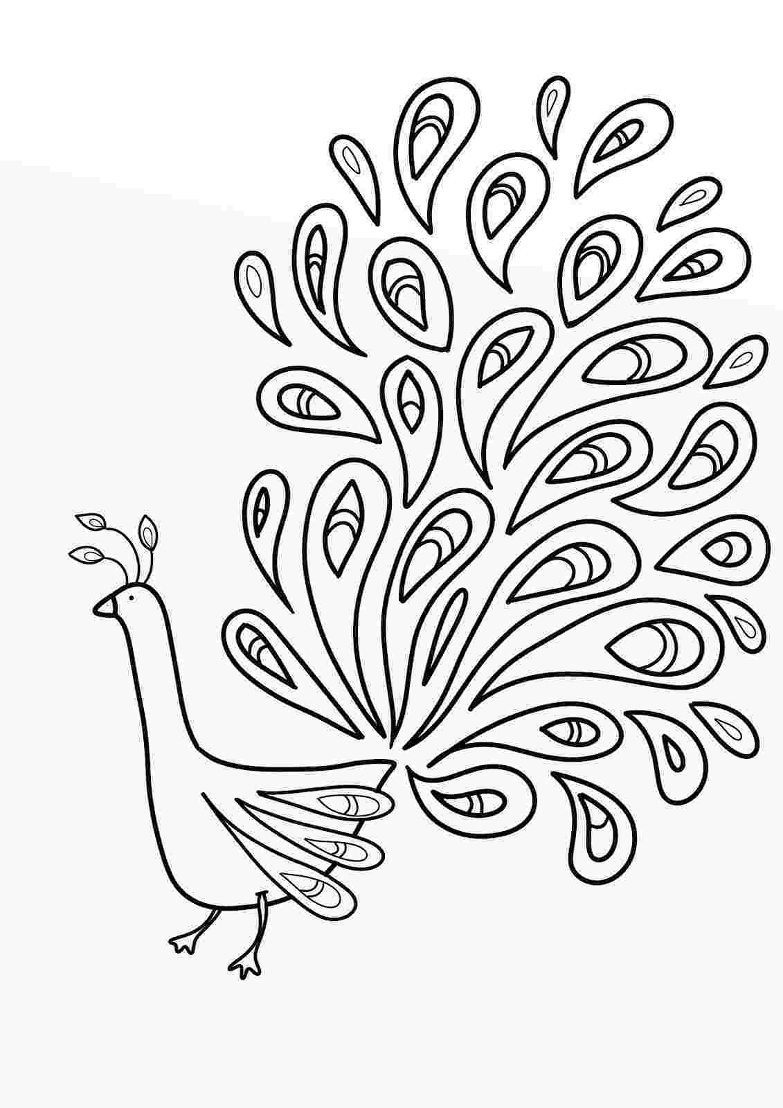 picture of peacock to color printable peacock coloring pages for kids cool2bkids picture to color of peacock