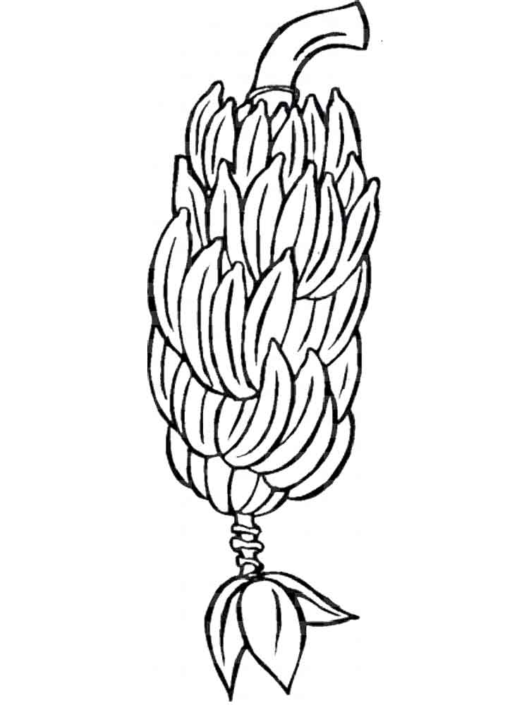 pictures of bananas to color coloring pages b for banana coloring page for kids bananas color pictures to of