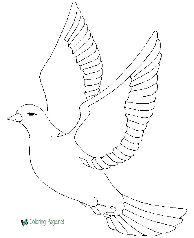 pictures of doves to color dove coloring pages doves of color pictures to
