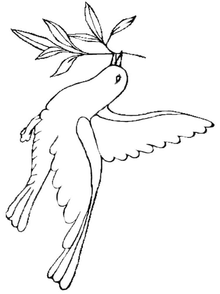 pictures of doves to color dove coloring pages download and print dove coloring pages of pictures color to doves