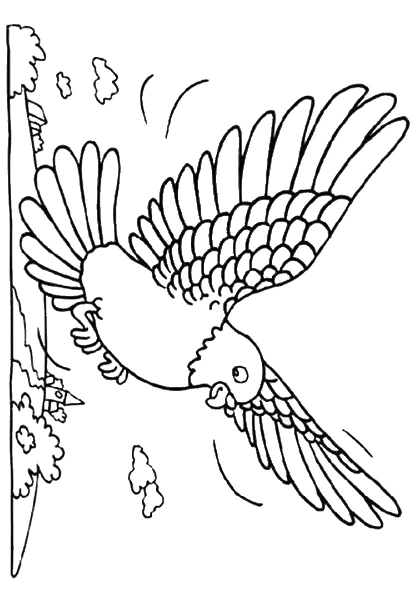 pictures of doves to color dove coloring pages pictures doves color to of