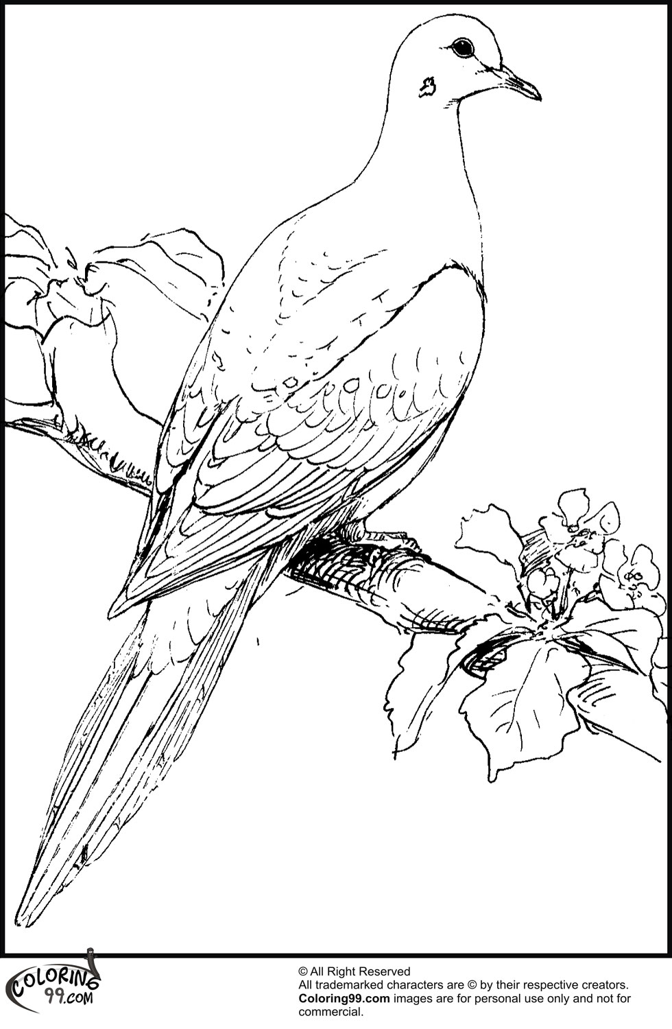 pictures of doves to color free dove coloring page coloring home to of pictures color doves