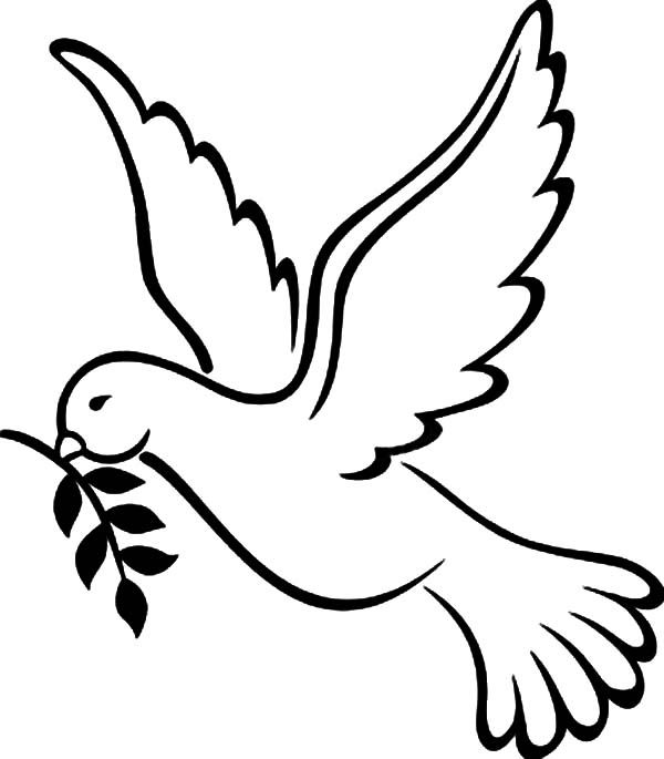pictures of doves to color free peace dove coloring pages pages coloring home pictures of color to doves