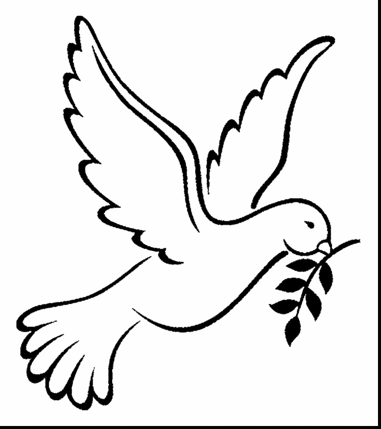 pictures of doves to color peace dove coloring page at getcoloringscom free color pictures to doves of