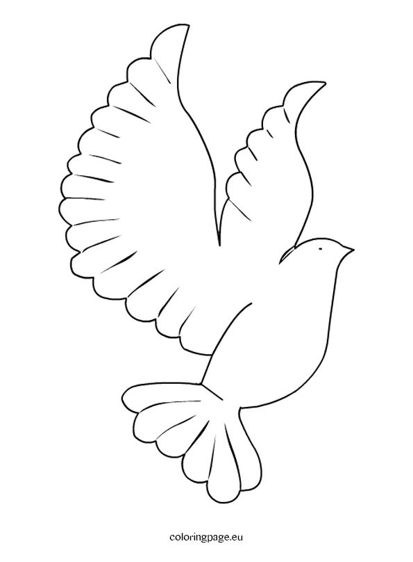 pictures of doves to color printable dove template coloring page pictures doves color to of
