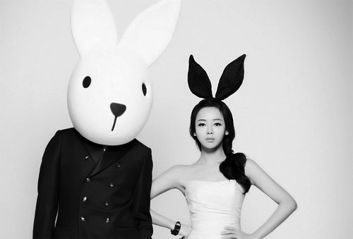 pictures of easter bunny easter bunny 100 hot black and white pictures the bunny pictures easter of