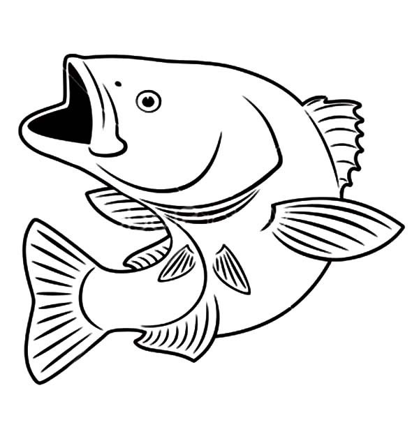 pictures of fish to color fish coloring pages free download color of pictures fish to