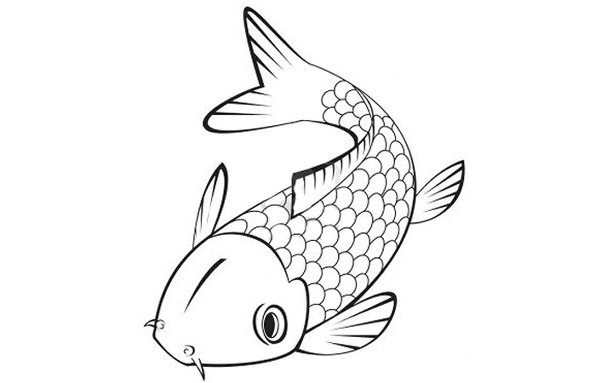 pictures of fish to color print download cute and educative fish coloring pages to fish pictures color of