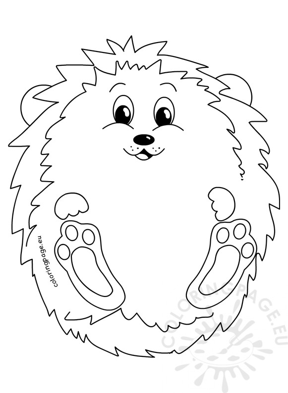 pictures of hedgehogs to colour cute hedgehog autumn illustration coloring page of hedgehogs colour pictures to