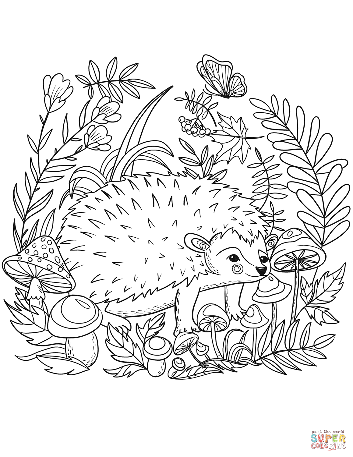 pictures of hedgehogs to colour hedgehog coloring page free printable coloring pages of pictures to colour hedgehogs