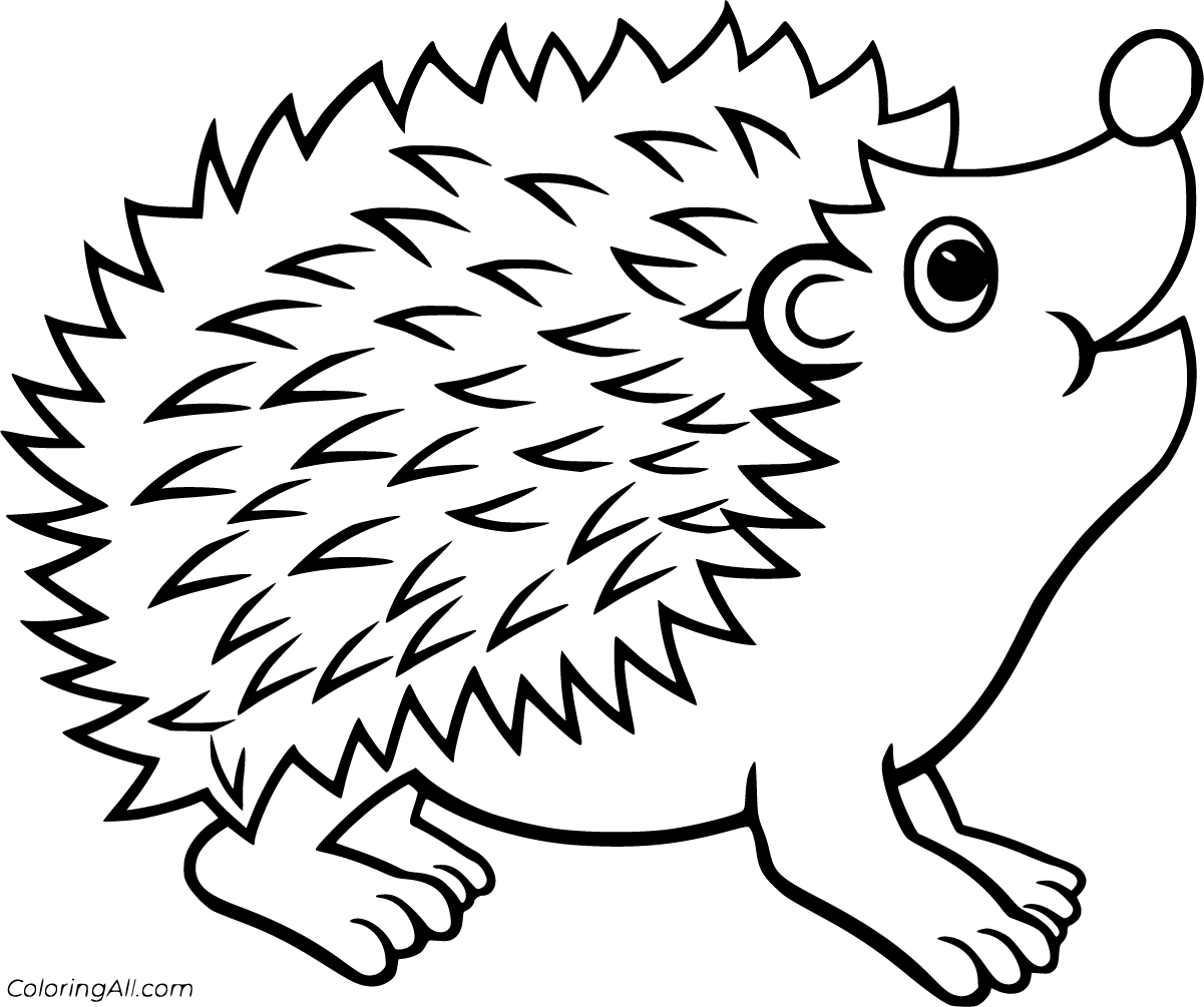 pictures of hedgehogs to colour hedgehog coloring pages coloringall pictures hedgehogs to of colour