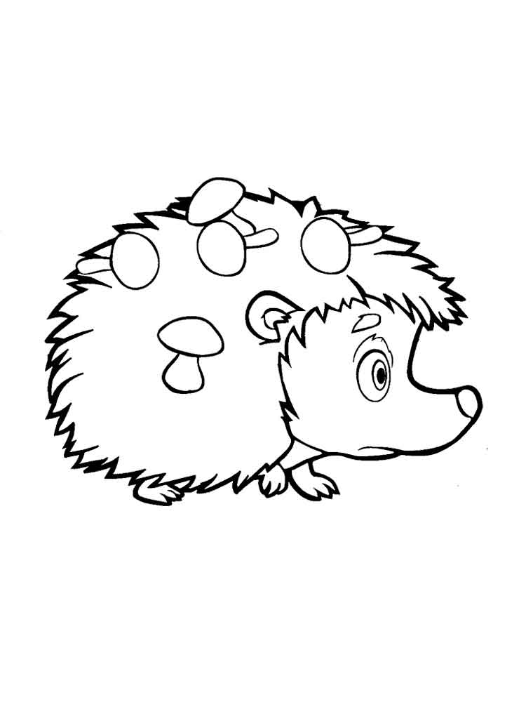 pictures of hedgehogs to colour hedgehog coloring pages download and print hedgehog colour pictures to hedgehogs of