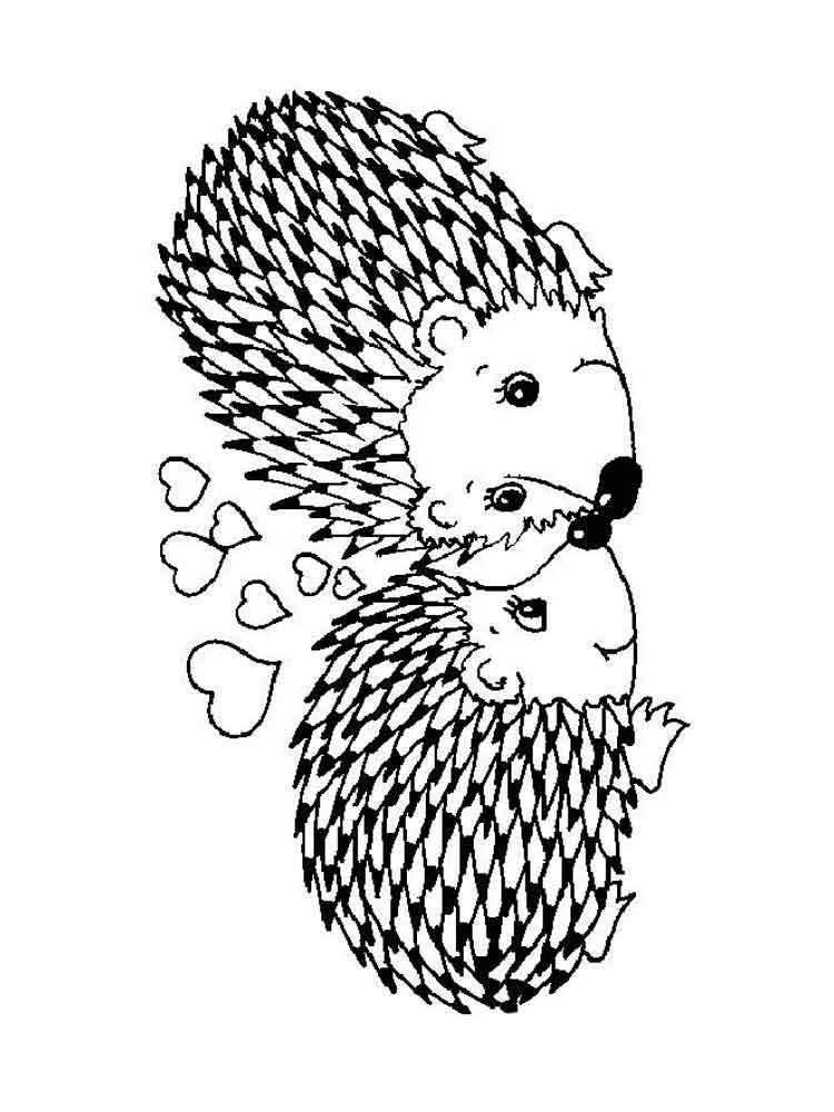 pictures of hedgehogs to colour hedgehog coloring pages download and print hedgehog hedgehogs of pictures to colour