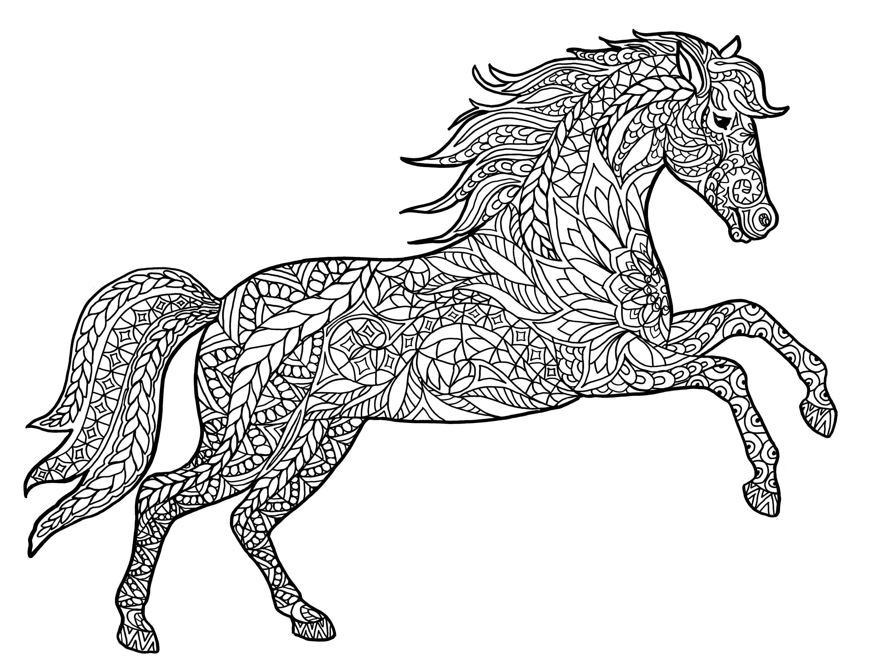 pictures of horses to colour in free horse coloring pages for adults kids cowgirl magazine to of pictures in horses colour