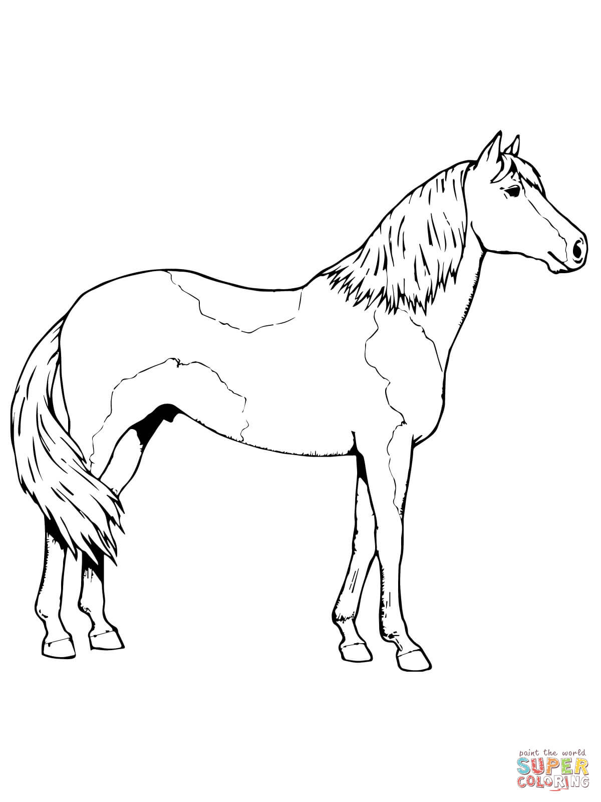 pictures of horses to colour in top 55 free printable horse coloring pages online of to pictures horses colour in