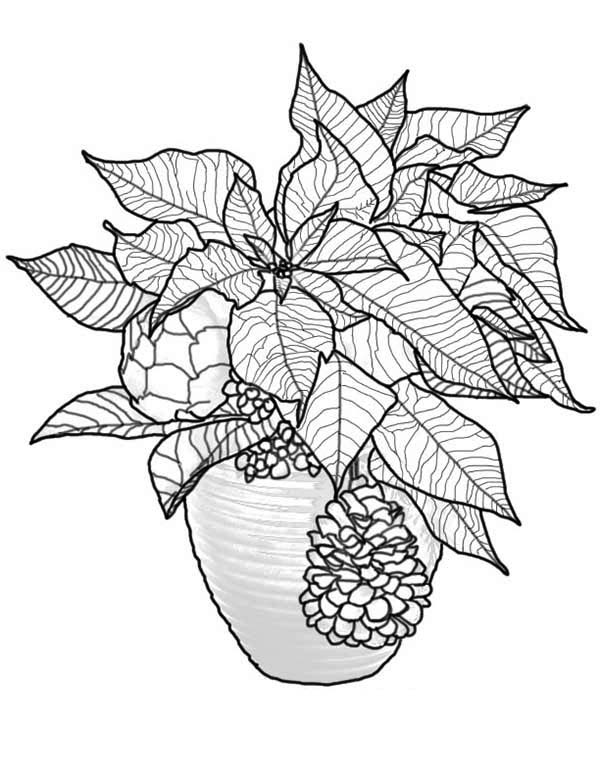 poinsettia coloring pages awesome poinsettia coloring play free coloring game online coloring poinsettia pages