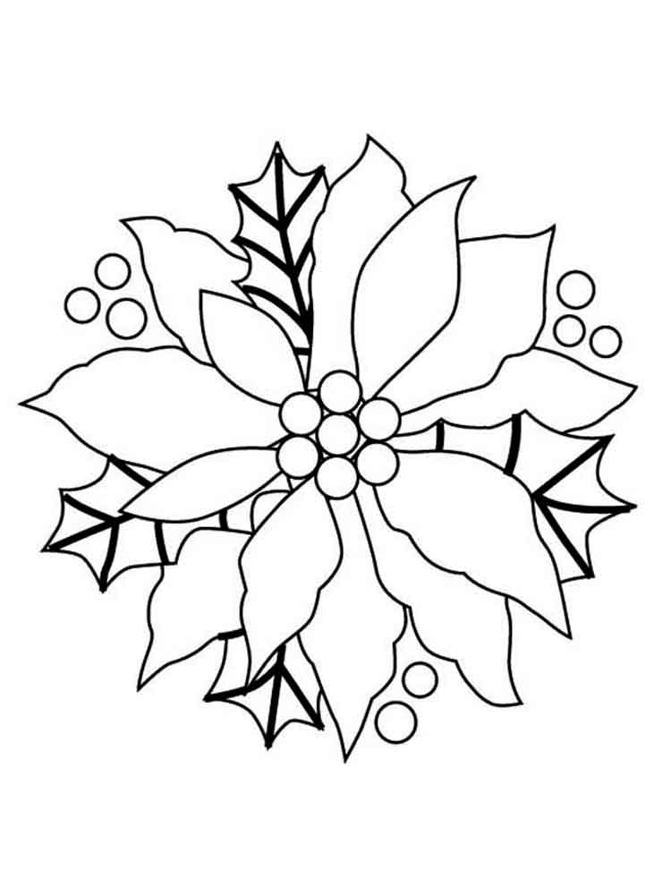 poinsettia coloring pages free printable poinsettia coloring pages for kids coloring pages poinsettia