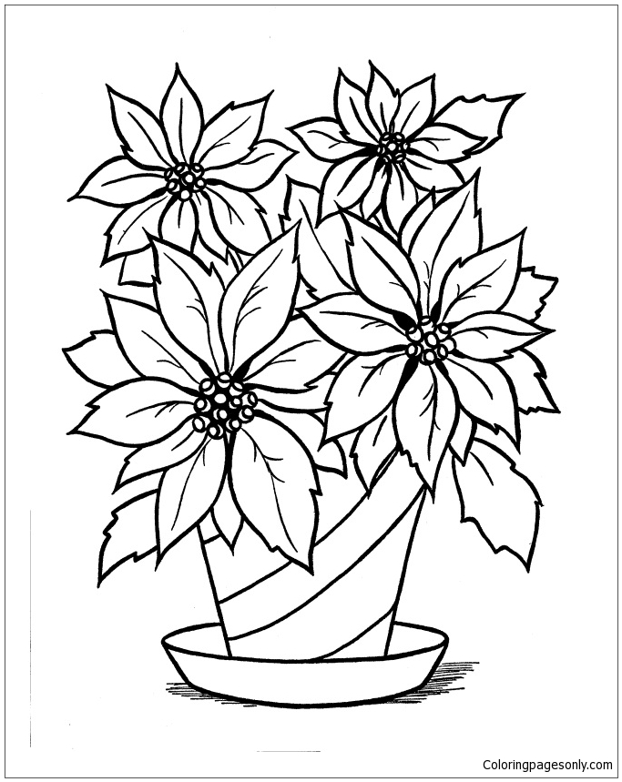 poinsettia coloring pages poinsettia flower coloring pages download and print poinsettia pages coloring