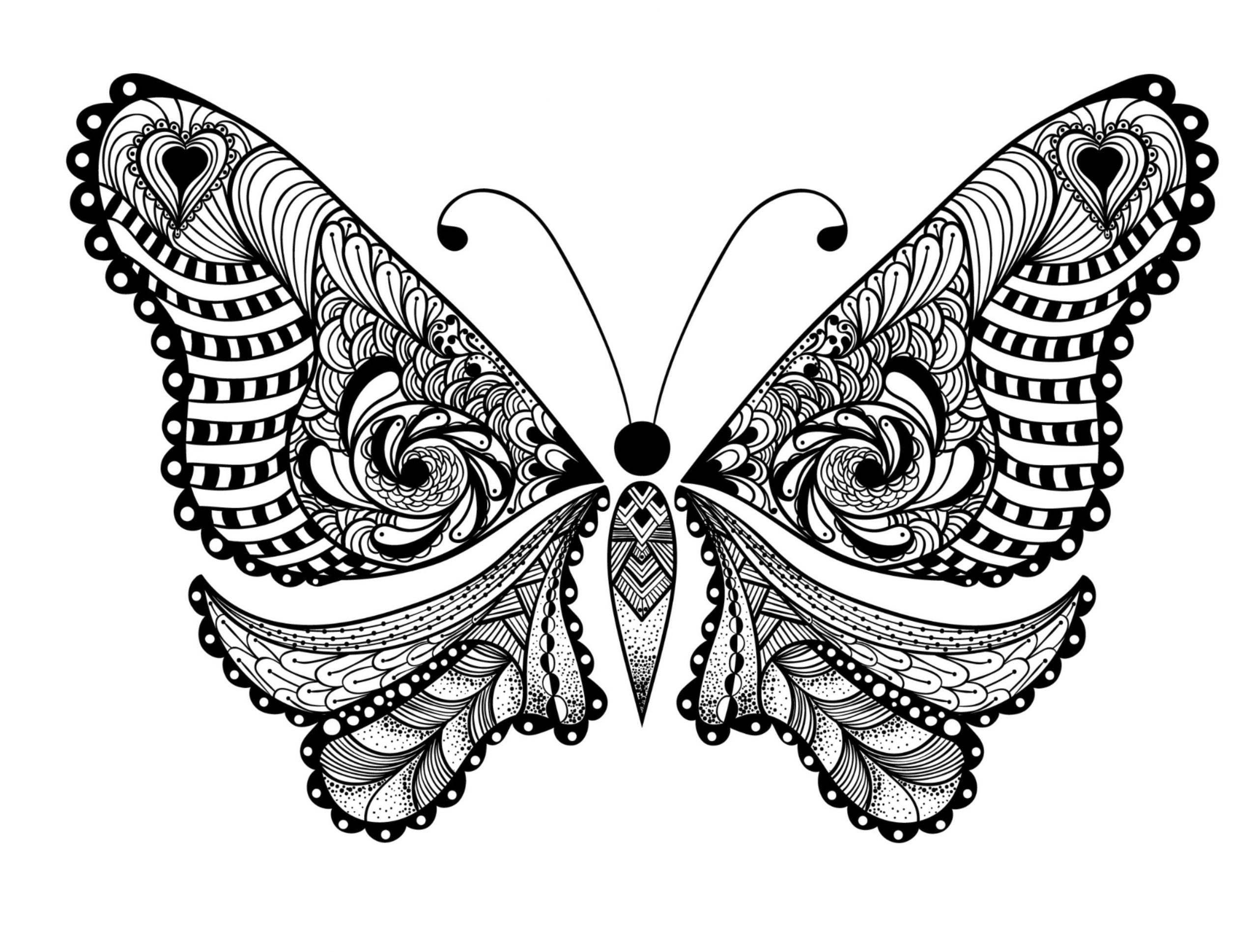 printable butterfly coloring sheets free printable butterfly coloring pages for kids printable coloring sheets butterfly 1 1