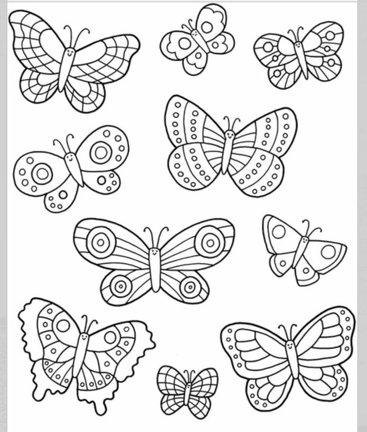 printable butterfly coloring sheets printable butterfly coloring pages for kids cool2bkids coloring sheets butterfly printable