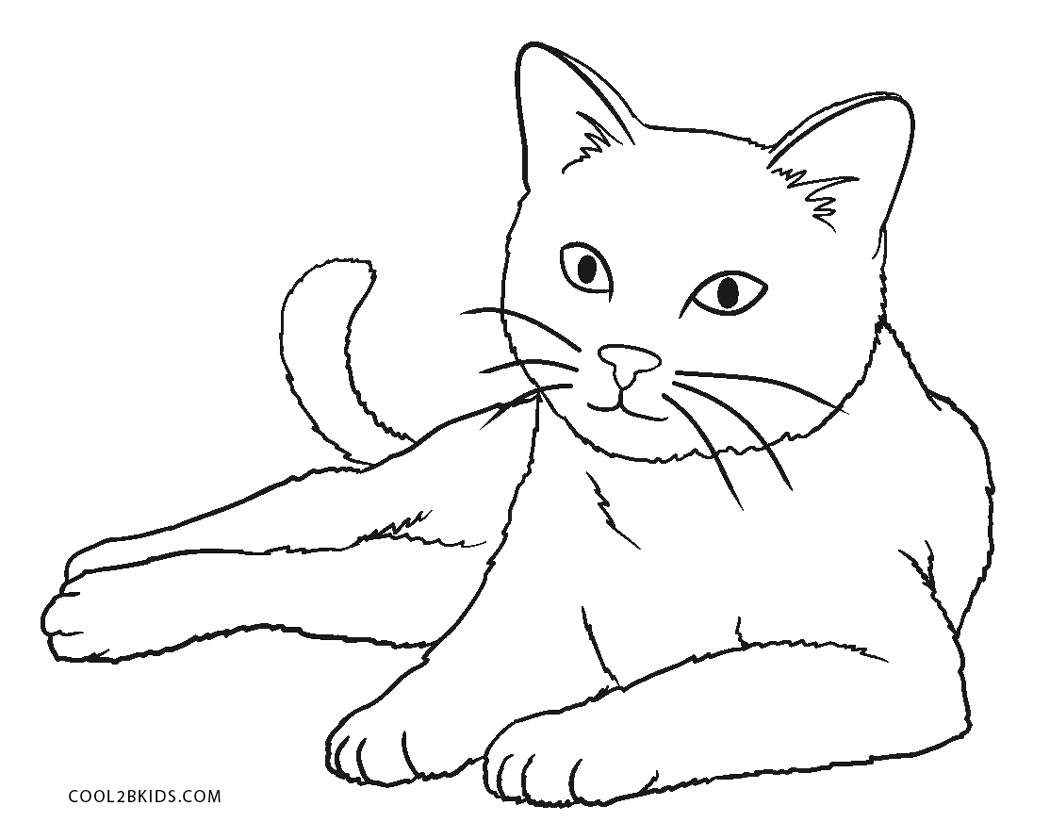 printable cat pictures to color free printable kitten coloring pages for kids best to printable cat color pictures